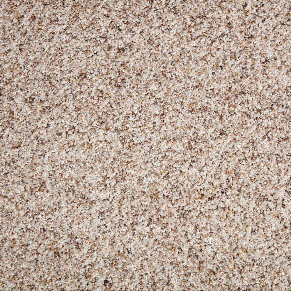 TrafficMaster Collinger II-Color Oxford Textured 12 ft. Carpet