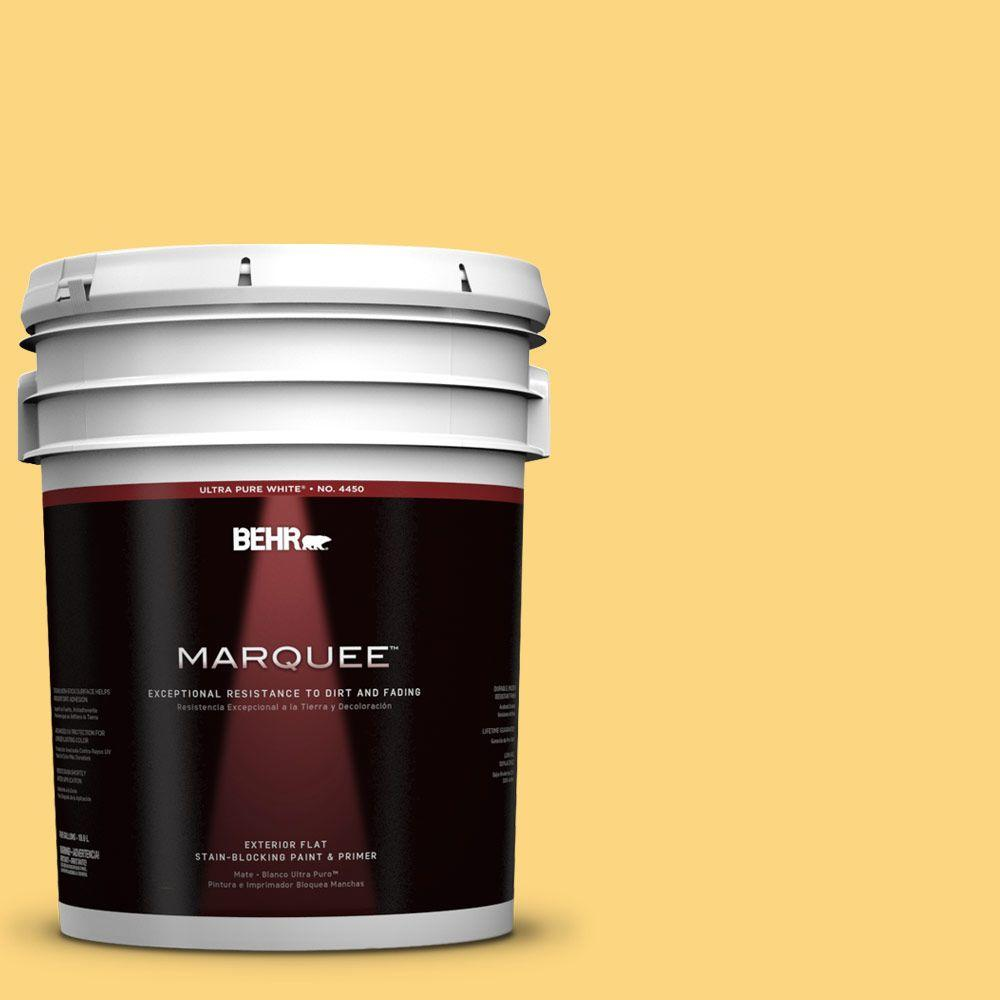 BEHR MARQUEE 5-gal. #350B-6 Wildflower Honey Flat Exterior Paint