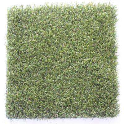 Carpet Sample- Trugrass- Color Pets Turf Gold Artificial Grass 8 in. x 8 in.