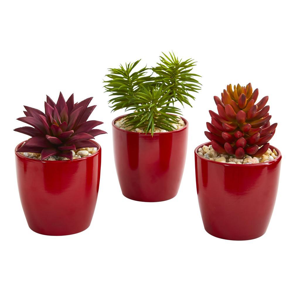 Indoor 8 Mixed Succulent Artificial Plant in Red Vase (Set of 3)