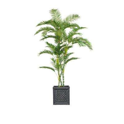 78 in. Tall Palm Tree in Planter