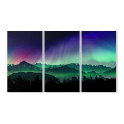 "11 in. x 17 in. ""Borealis Dreams"" by Marcus Prime Printed Wood Wall Art"