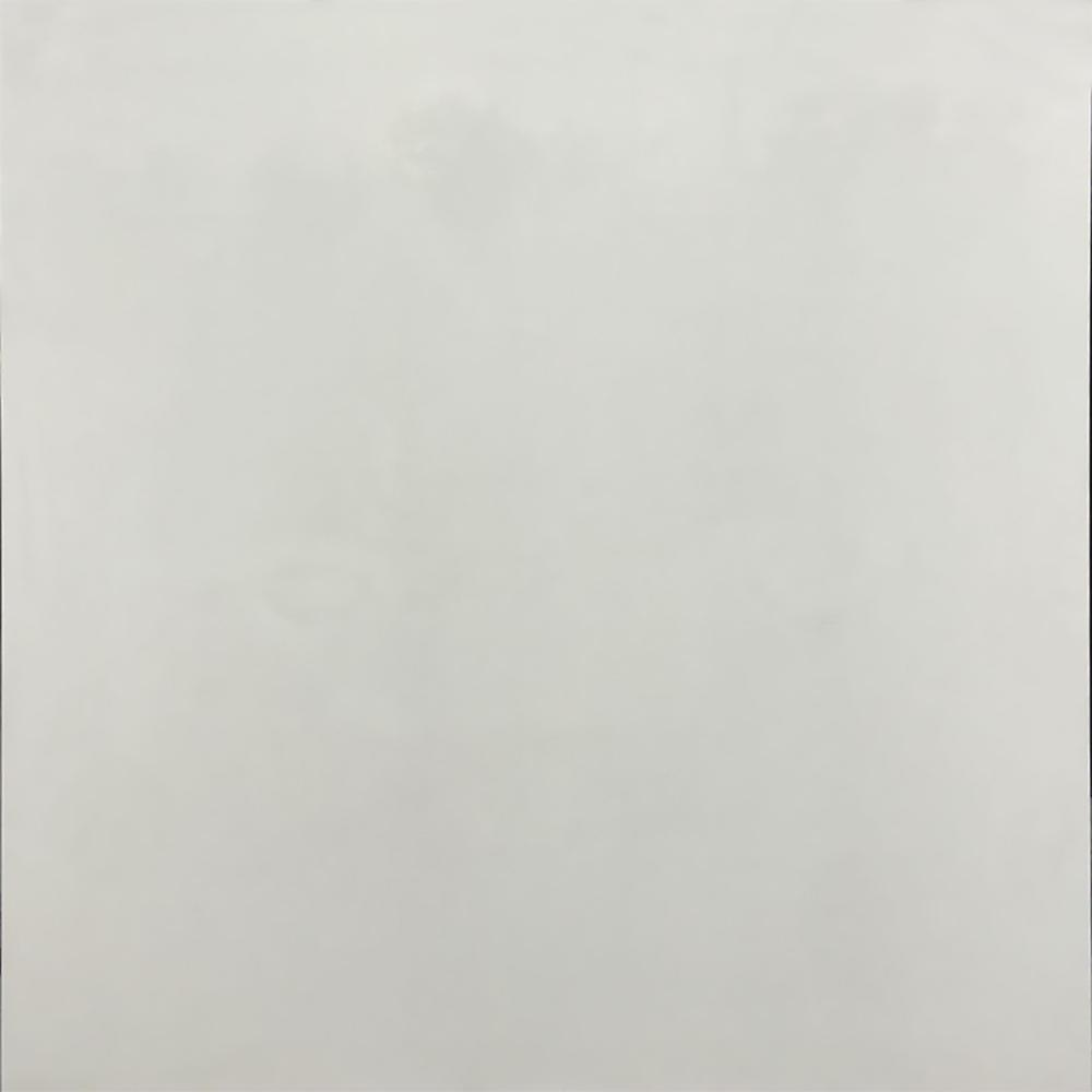Super White Polished 32 In. X 32 In. Double Load Porcelain