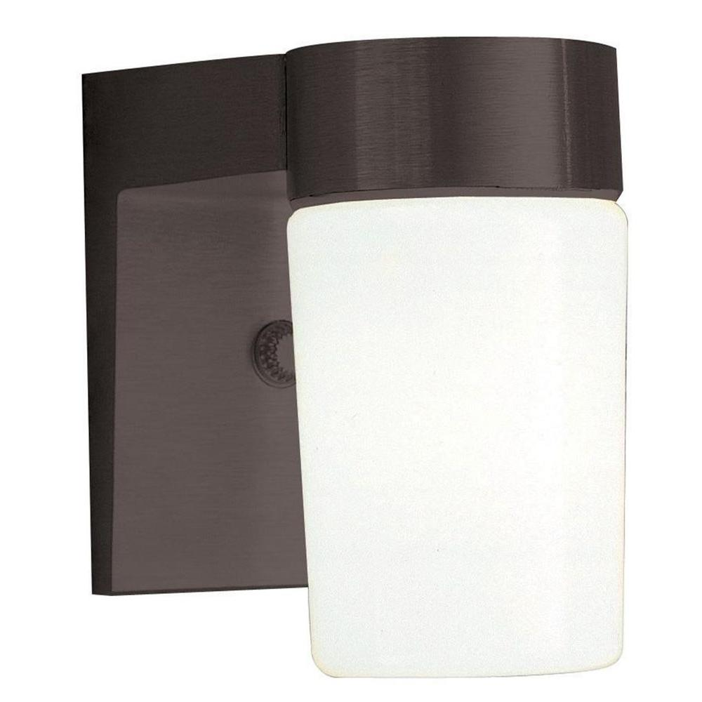 Luminance 1-Light Black Outdoor Lantern with Opal Glass