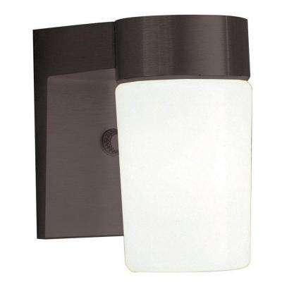 1-Light Black Outdoor Lantern with Opal Glass