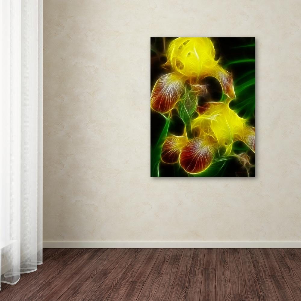 """Trademark 47 in. x 35 in. """"Yellow Iris"""" by Kathie McCurdy..."""