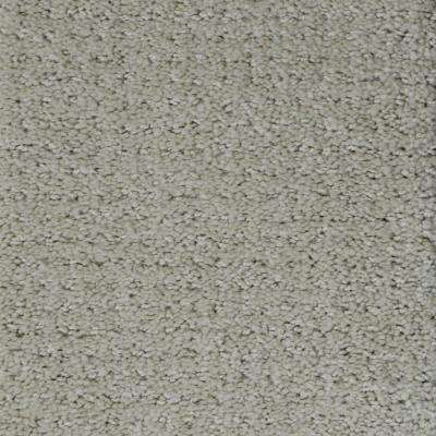 Carpet Sample - Heirlooms - Color Classic Pattern 8 in. x 8 in.