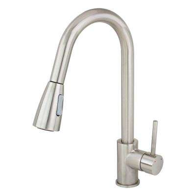 Single-Handle Pull-Down Sprayer Kitchen Faucet in Stainless Steel