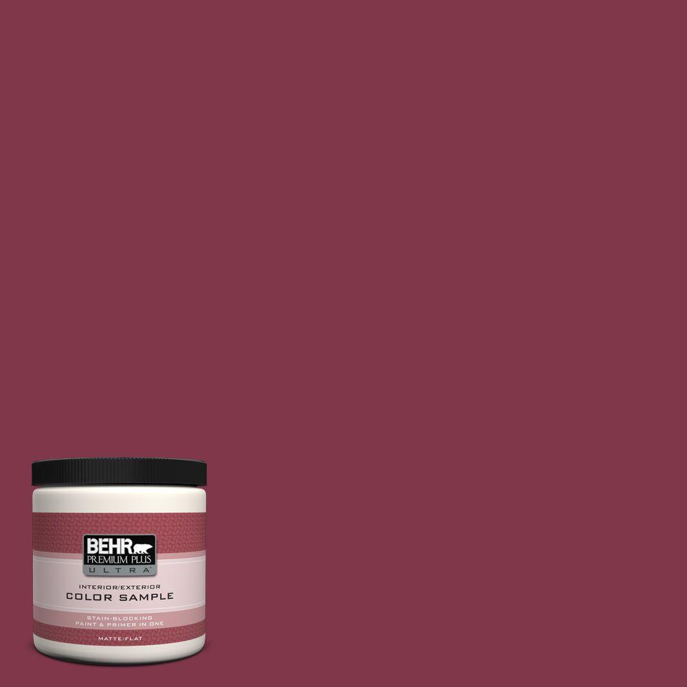 120d 7 Ruby Red Matte Interior Exterior Paint And Primer In One Sample