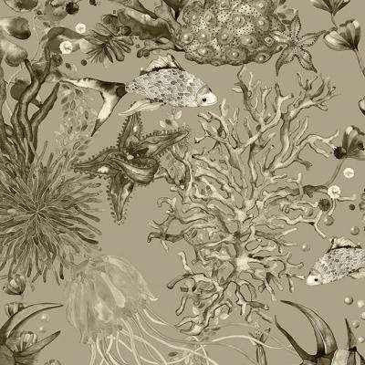 8 in. x 10 in. Bergen Grey Marine Life Wallpaper Sample