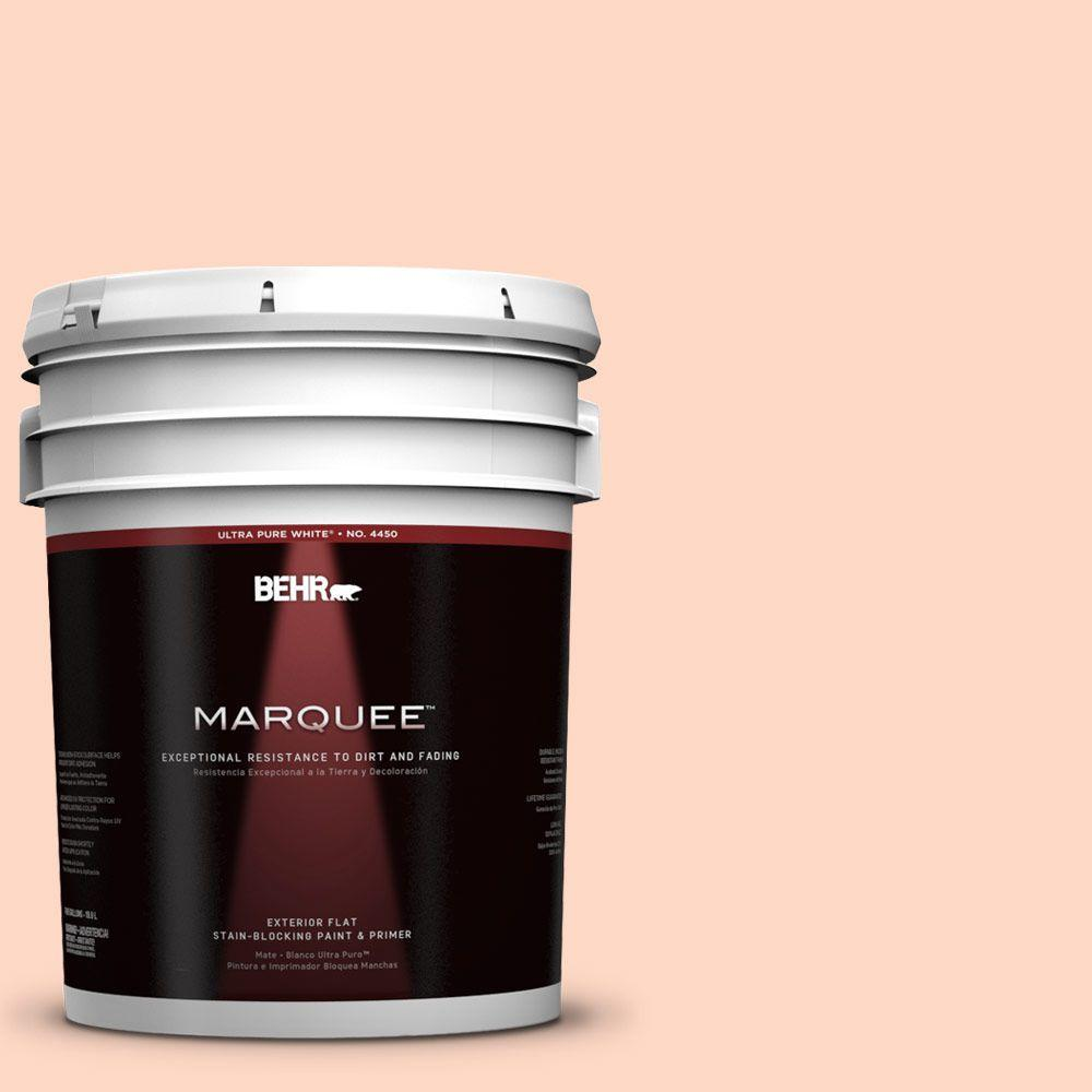 5-gal. #230C-2 Shell Coral Flat Exterior Paint