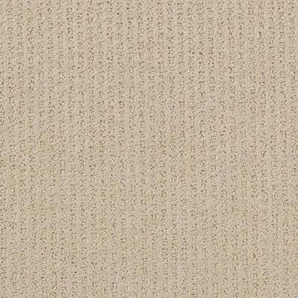 Lifeproof Carpet Sample Sequin Sash Color Naturelle