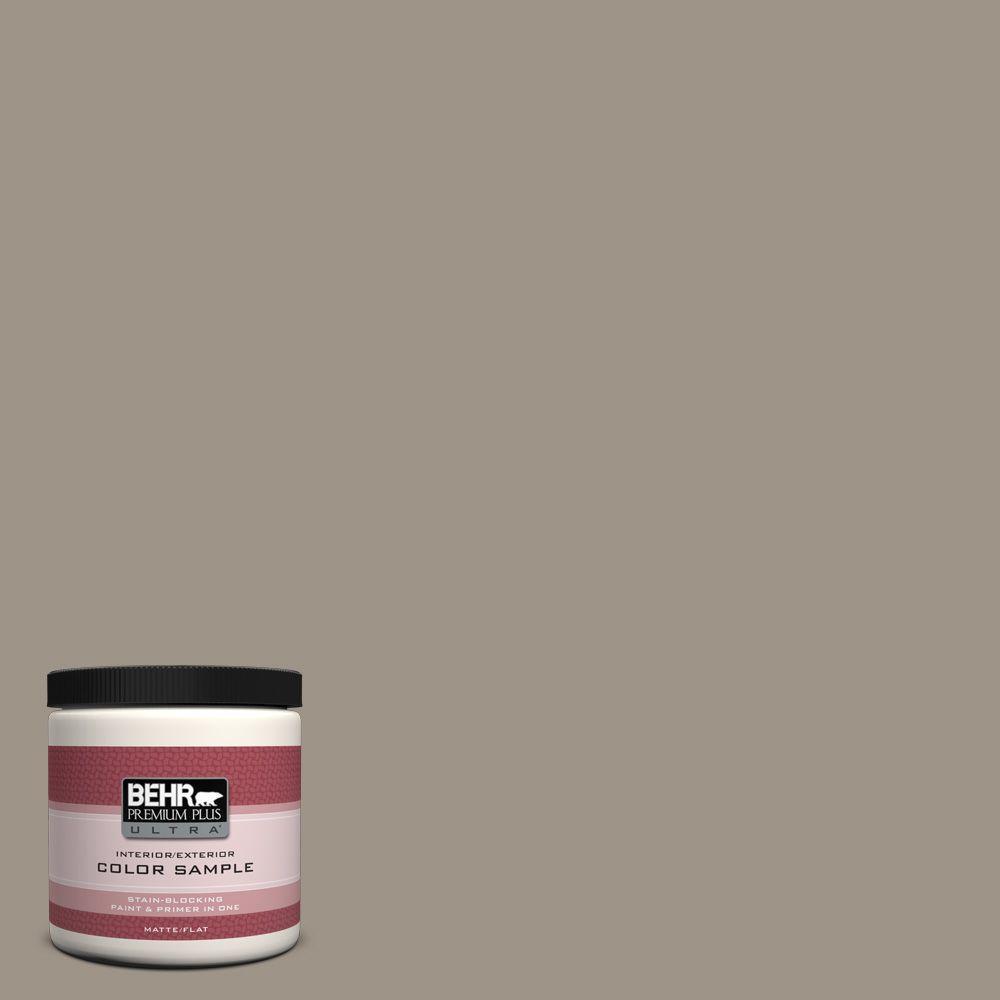 BEHR Premium Plus Ultra 8 oz. Home Decorators Collection Greywood Interior/Exterior Paint Sample