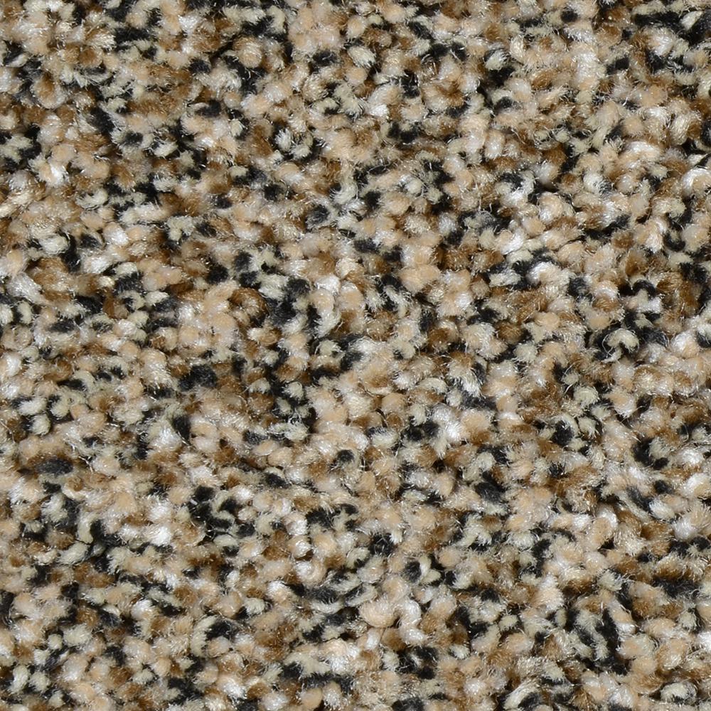 Carpet Sample - Grayson - Color Brunswick Texture 8 in. x 8 in.