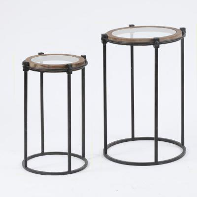 2-Piece Metal & Glass Round Accent Table