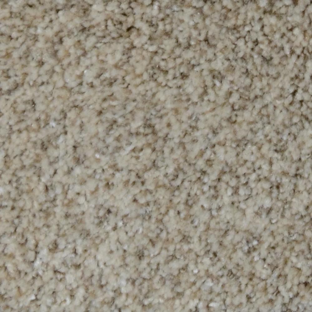 Home Decorators Collection Carpet Sample Appalachi Ii S F Color Trailblazer F Texture
