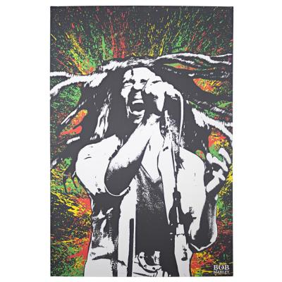 Licensed Bob Marley Paint Splash Wrapped Canvas Wall Art