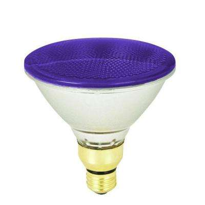 90-Watt Purple PAR38 Dimmable Halogen Flood Light Bulb (Case of 12)