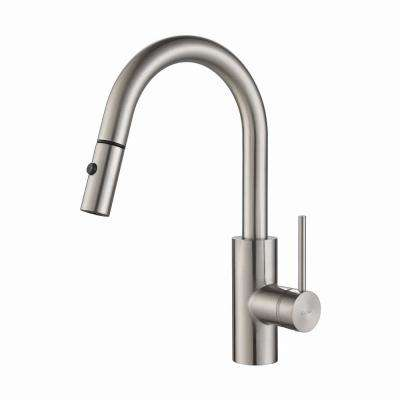 Oletto Single-Handle Pull-Down Kitchen Faucet with Dual-Function Sprayer in Stainless Steel