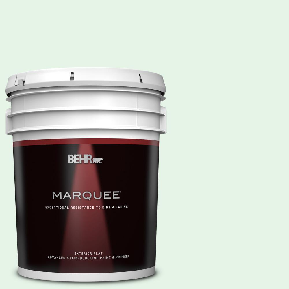 Behr Marquee 5 Gal Ppl 25 Sign Of Spring Flat Exterior Paint And Primer In One 445005 The Home Depot