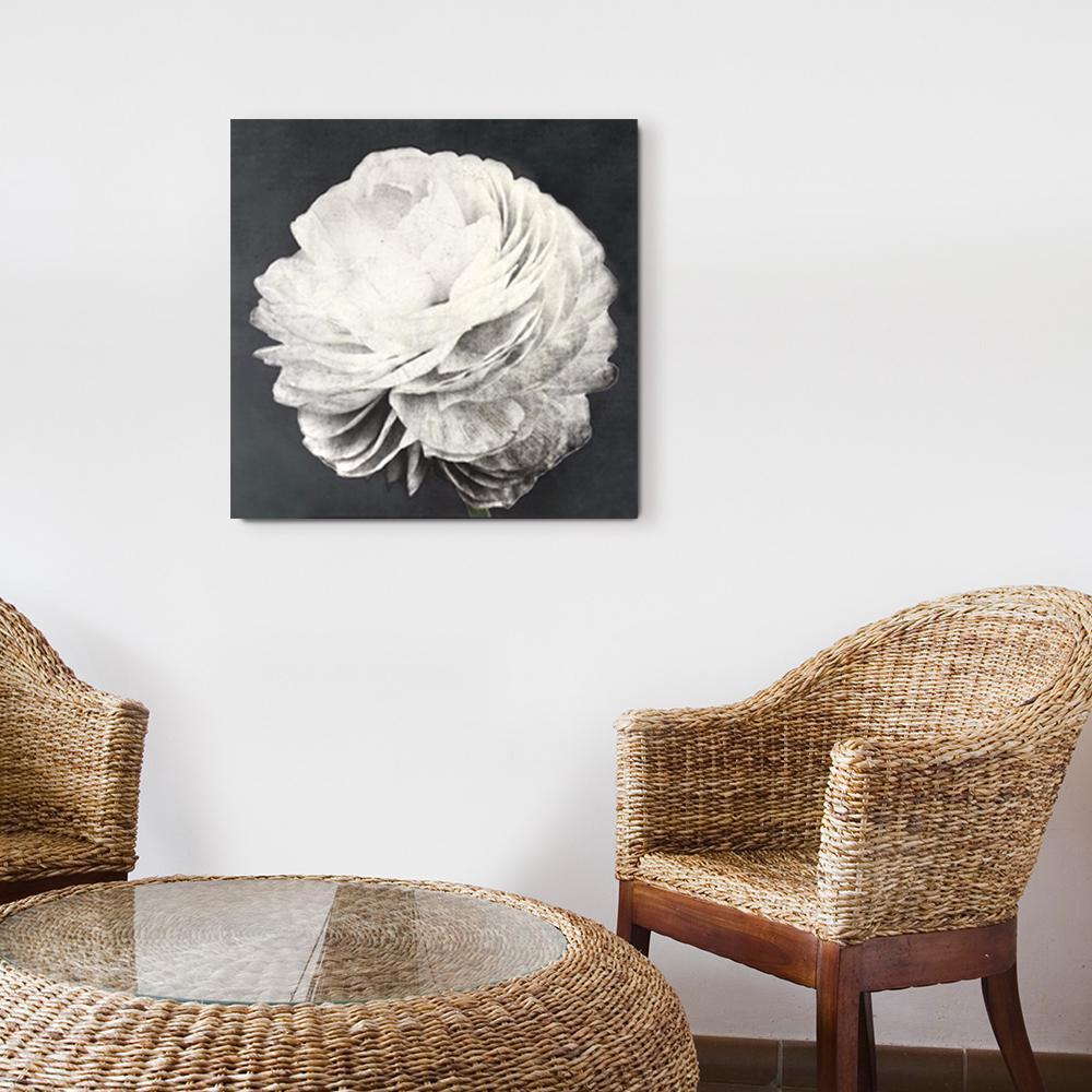 "24 in x 24 in ""Pretty View II"" by Wynwood Studio Printed Wood Wall Art"