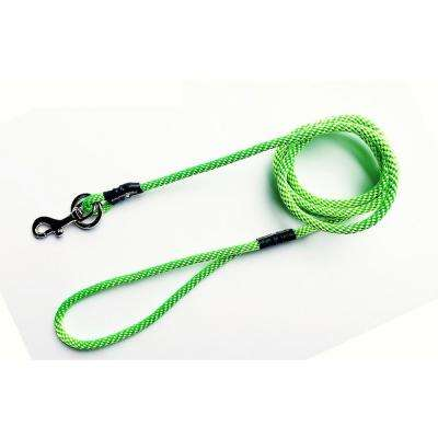 Neon Green No Pull Leash for Small Dogs