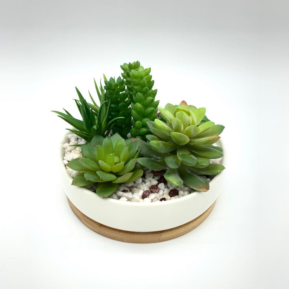 Faux Succulent in White Ceramic Planter