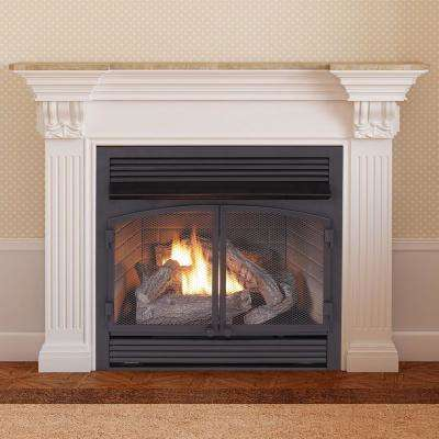 29 in. 32,000 BTU Ventless Dual Fuel Gas Fireplace Insert with Remote Control