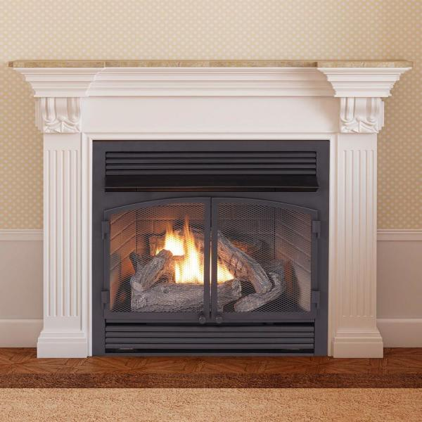 Duluth Forge 29 In 32 000 Btu Ventless Dual Fuel Gas Fireplace Insert With Remote Control 170112 The Home Depot