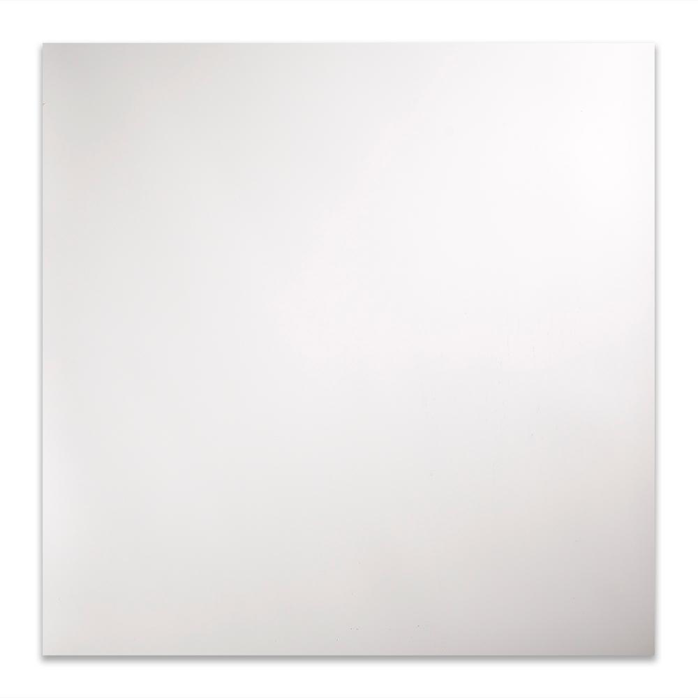 Fasade Flat Panel 2 Ft X 2 Ft Matte White Lay In Vinyl Ceiling Tile 20 Sq Ft Pl6901 The Home Depot