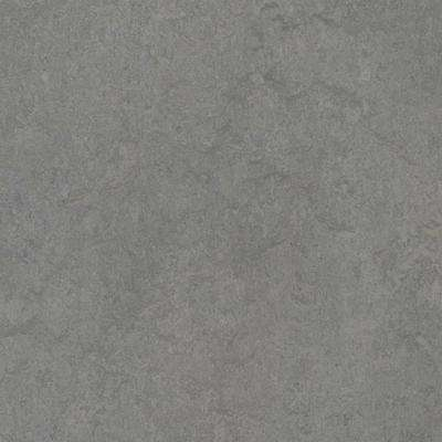 Eternity 9.8 mm Thick x 11.81 in. Wide x 11.81 in. Length Laminate Flooring (6.78 sq. ft. / case)