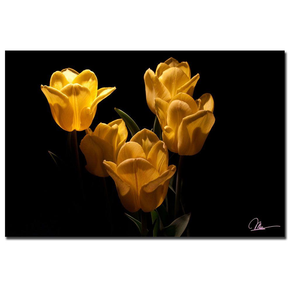 Trademark Fine Art 24 in. x 16 in. Yellow Blooms V Canvas Art