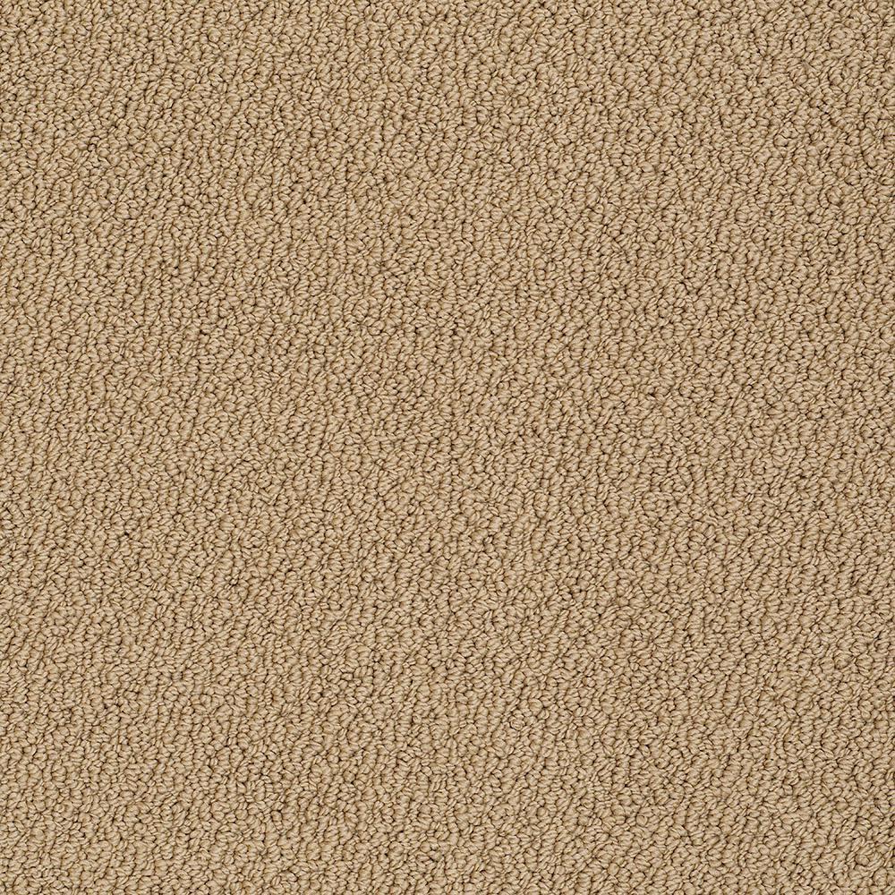 Platinum Plus Carpet Sample Out Of Sight Iii Color