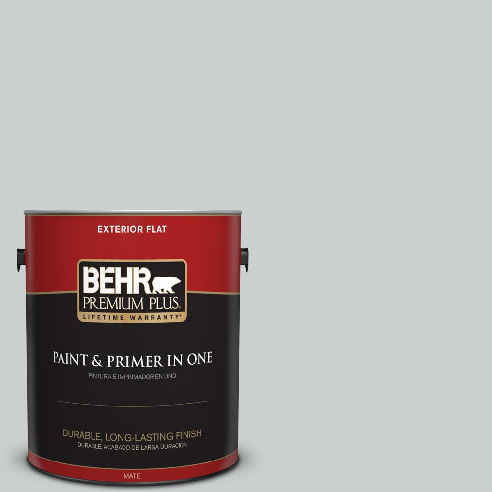 1 gal. #HDC-MD-06G Sparkling Silver Flat Exterior Paint