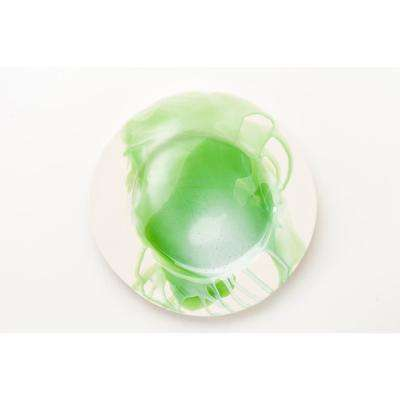 Splash Green & White Dinner Plate, Set of 4