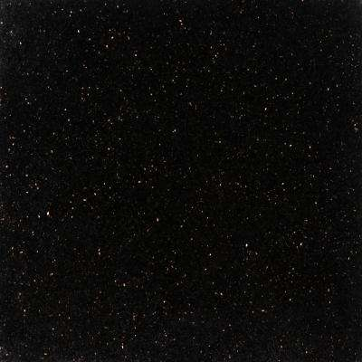 Black Galaxy 18 in. x 18 in. Polished Granite Wall Tile (9 sq. ft. / case)