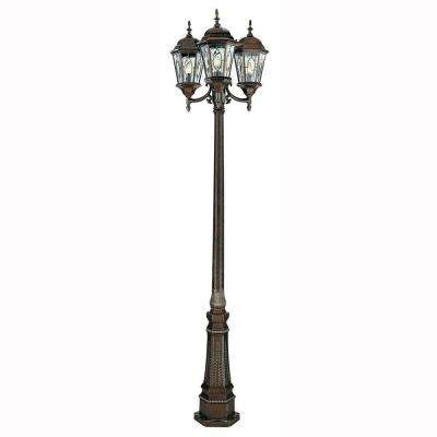 Cameo 3-Light Outdoor Brown Lamp Post with Water Glass