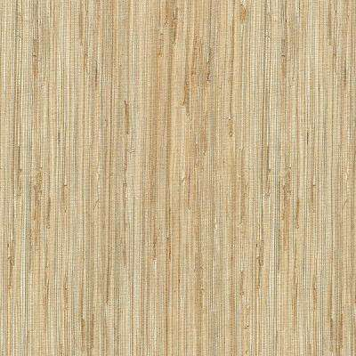 Daria Neutral Grasscloth Wallpaper Sample