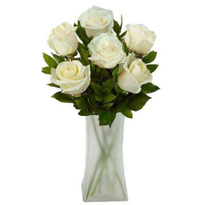 Gorgeous White Rose Bouquet in a Frosted Vase (6 Long Stem) Overnight Shipping Included