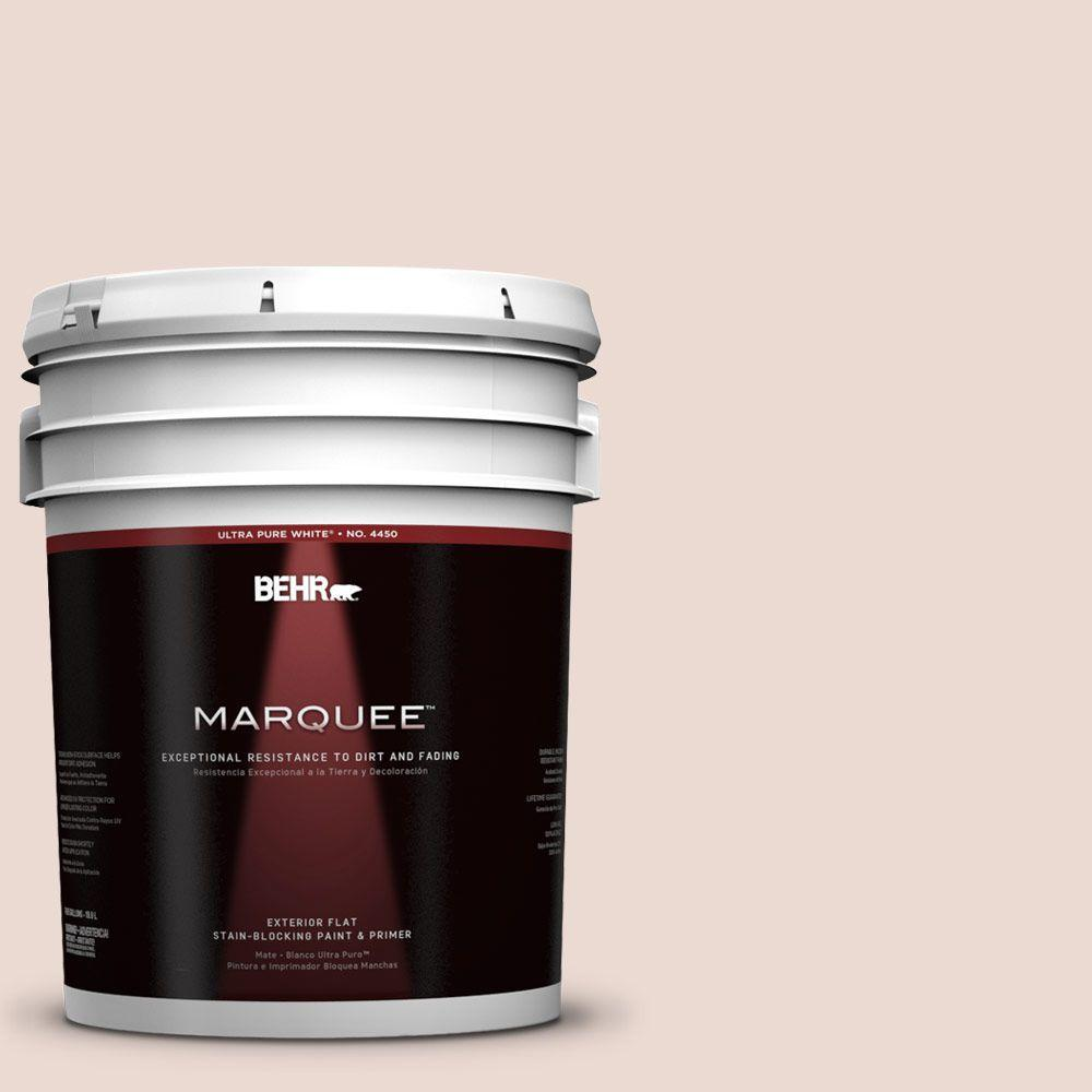 BEHR MARQUEE 5-gal. #760A-2 Palatial Flat Exterior Paint
