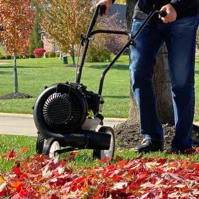 230 MPH 450 CFM 52 cc Gas Powered Walk-Behind Leaf Blower