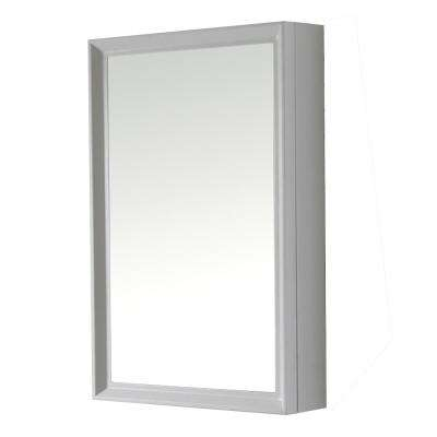 Parrish 24 in. W x 36 in. H Surface-Mount Medicine Cabinet in Bright White