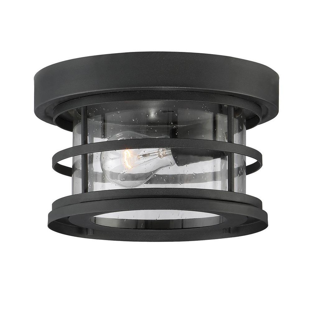 1-Light Black Outdoor Hanging Ceiling Light