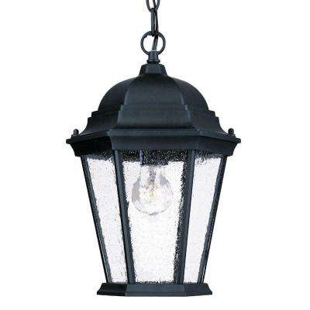 Richmond Collection 1-Light Matte Black Outdoor Hanging Lantern