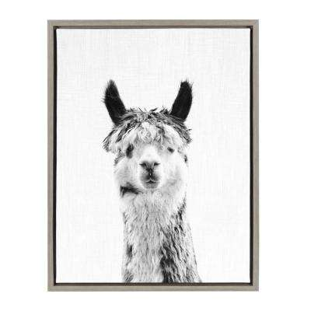 "24 in. x 18 in. ""Llama"" by Tai Prints Framed Canvas Wall Art"