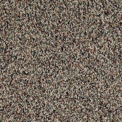 Playful Moments II - Light Antique Textured Multi 12 ft. Carpet