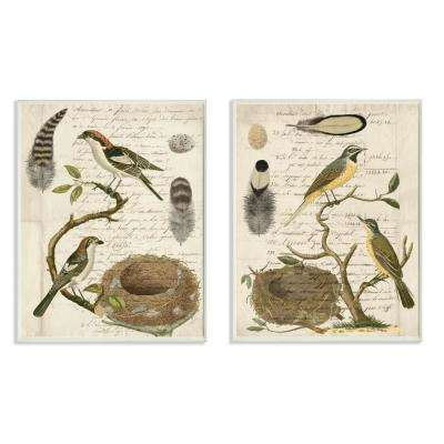 "10 in. x 15 in. ""Avian Journal Bird Illustrations"" by Vision Studio Wood Wall Art (2-Piece)"