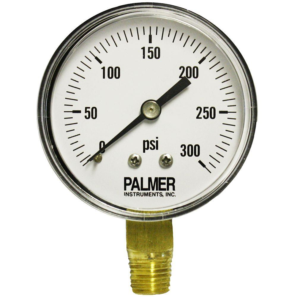 Palmer Instruments 2.5 in. Dial 300 psi Painted Steel Case Utility Gauge