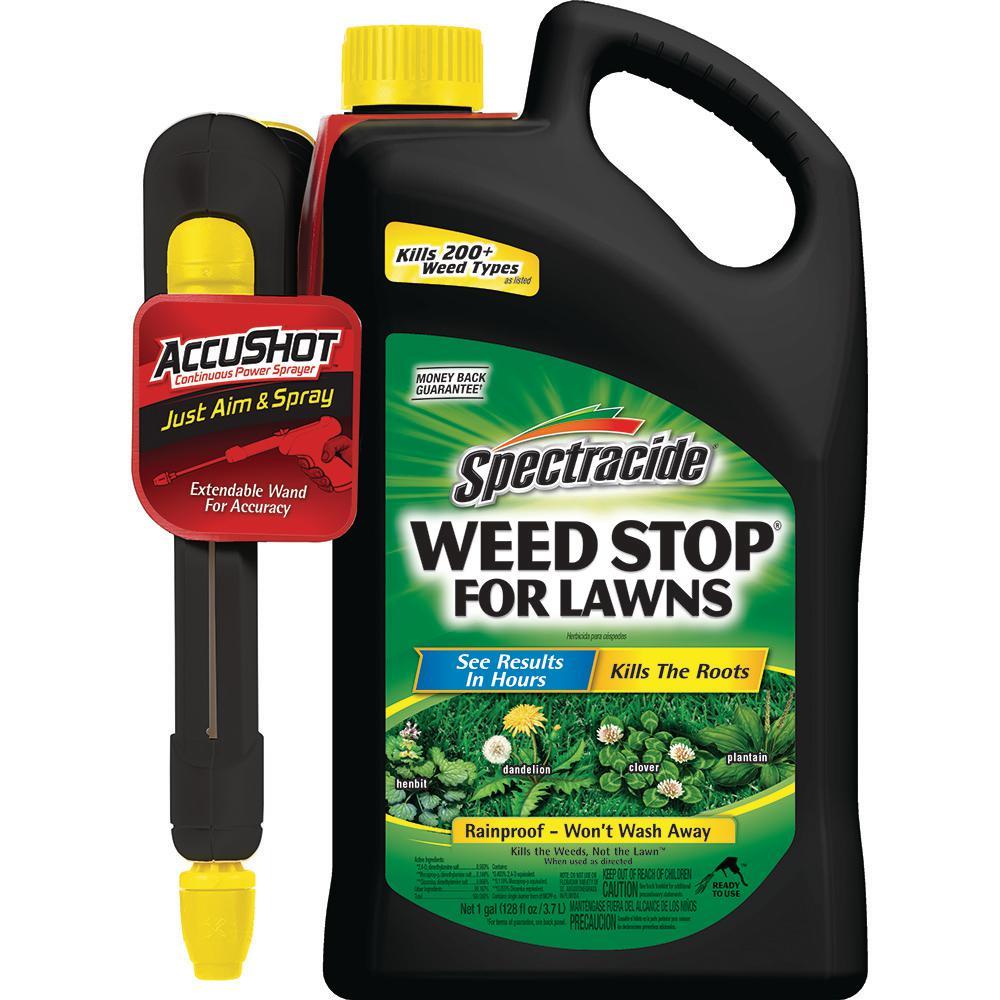 Compare N Save 32 Oz 2 4 D Broadleaf Weed Control 75311