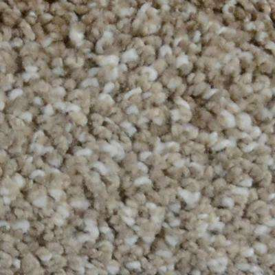 Carpet Sample - Great Moments II (T) - Color Avalon Texture 8 in. x 8 in.
